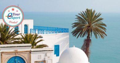 5 лучших отеля Туниса