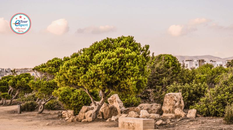 Кипр – остров, где наслаждаешься жизнью