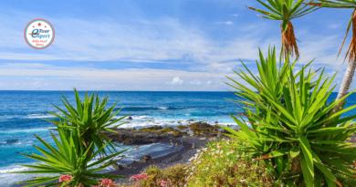 счастье на Канарских островах
