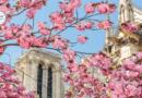 Весенний отдых в европейских столицах