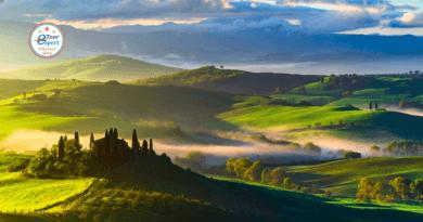 Вино, как формула любви: путешествие на родину знаменитого напитка
