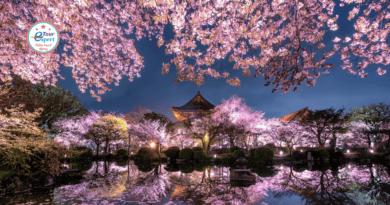 Япония: пряные краски Востока