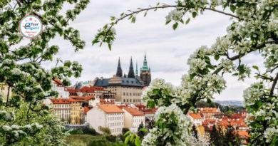 Туры в Чехию от 18695 руб.
