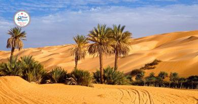 Путешествие в Тунис: оазис посреди песков обетованных