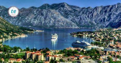 туры в Черногорию от 16155 руб.