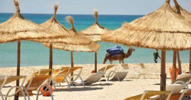 туры в Тунис от 24020 руб.